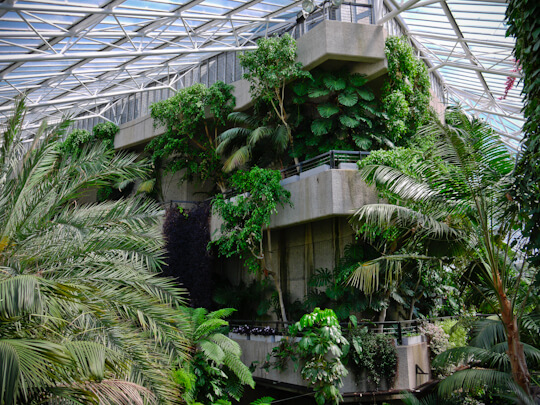 The Barbican Conservatory Londra
